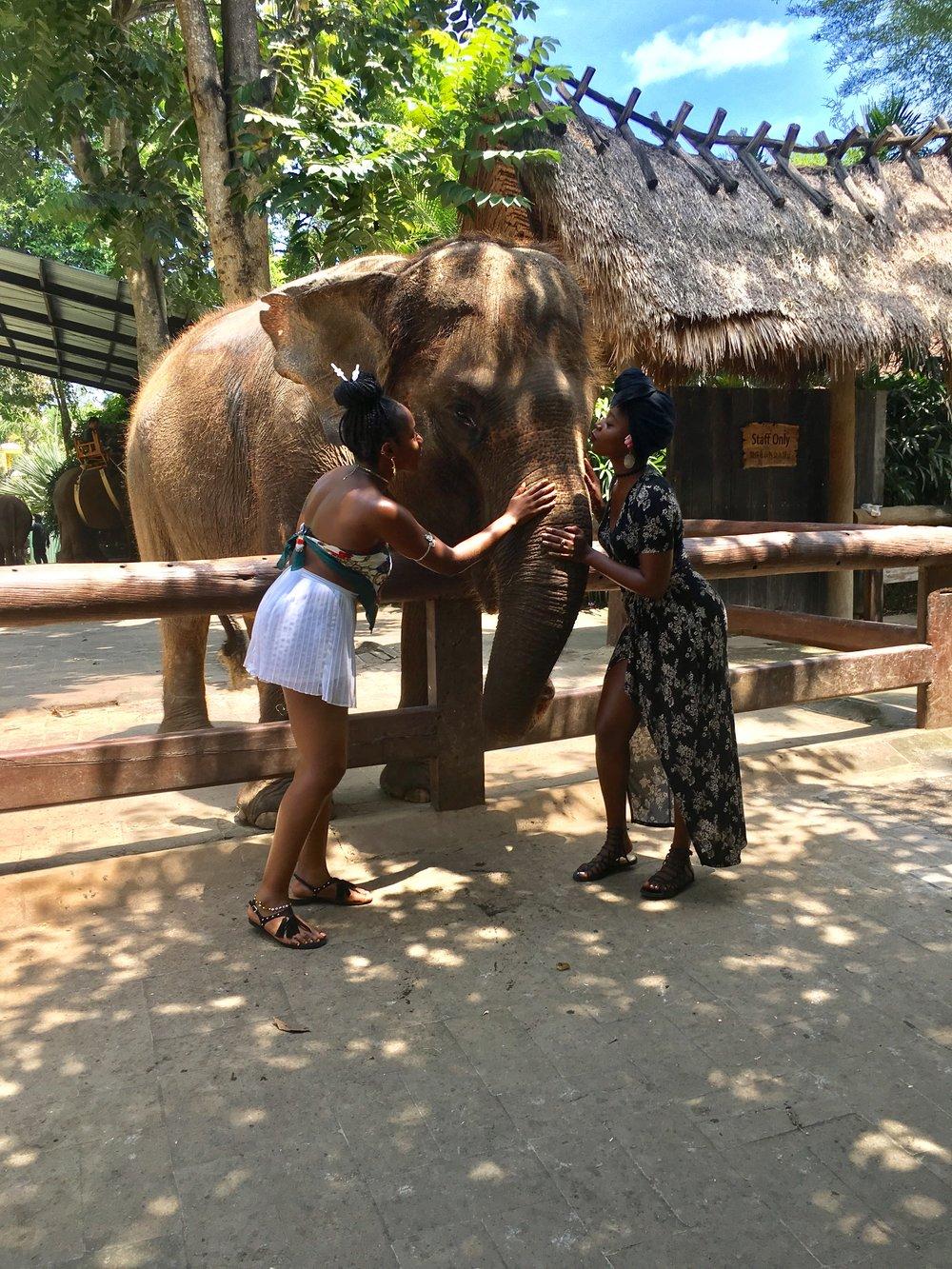 IMG_5174.jpgtherevgoesagain-BaliBliss