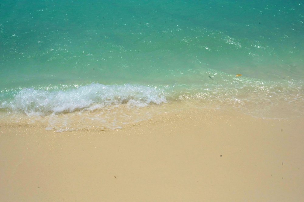 ARUBA DAY1-(2)_Fotor.jpg