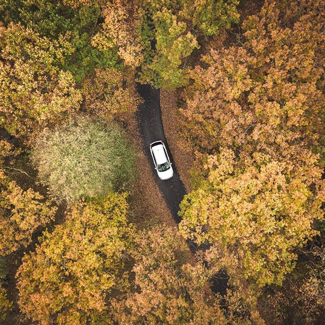What's your next road trip destination, and who would you bring?  #welcometonature #naturelovers #autumn #sweden #visitsweden #nature #outdoors #aerial #photooftheday #naturephotography #forest #dji #mavicpro #drone #dronestagram #droneinfluencer #artistfound #dronephotography #dronetagraphy #dronefeed #droneoftheday #droneofficial #acreativenetwork #photooftheday #dronepointofview #landscapesandgoosebumps #instadaily #droneporn #road