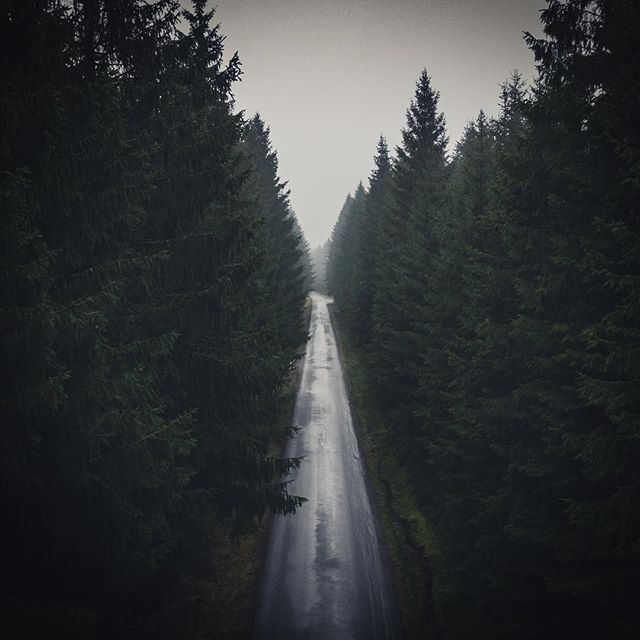 Love roads like this.  #welcometonature #naturelovers #travel #sweden #visitsweden #ig_sweden #nature #landscape #adventure #outdoors #visitscandinavia #photooftheday #picoftheday #roadtrip #fog #instagood #toursweden #explore #tree #naturephotography #forest #dji #mavicpro #dronestagram #drone #swedenmylove #moodygrams #instadaily #droneoftheday #aerial