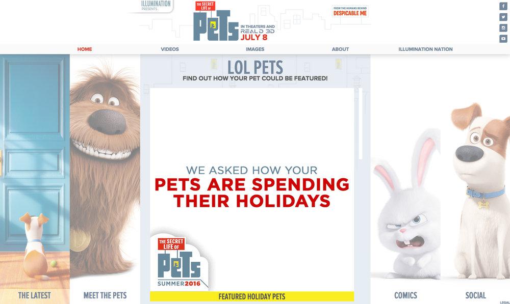 pets3.jpg