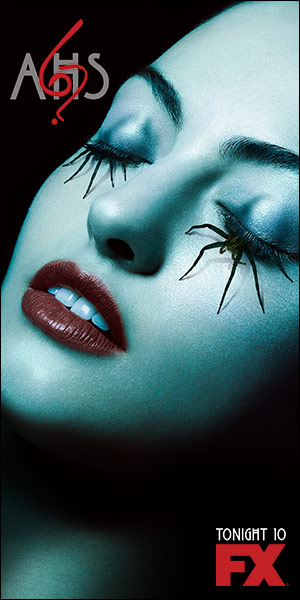 AHS6_300x600_spider_ton.jpg