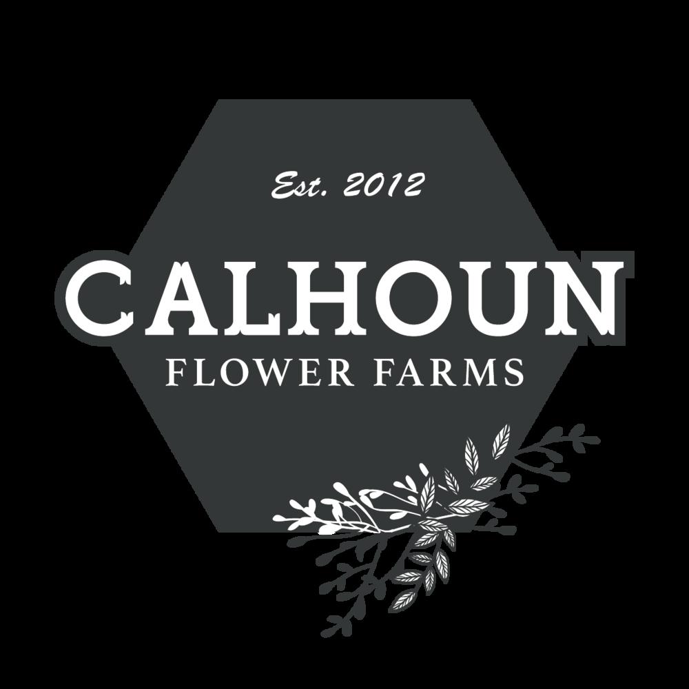 Calhoun Logo 1  (transparent)-01.png