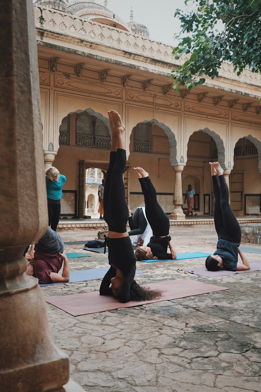 Students practicing yoga inversions at Shri Galtaji, Inspired India 2018. Photography by Precious LaPlante.