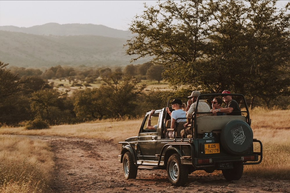 Victoria Leader and INSPIRED INDIA guests, Ranthambore National Park Safari