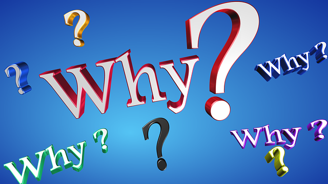 why-1780726_640.png