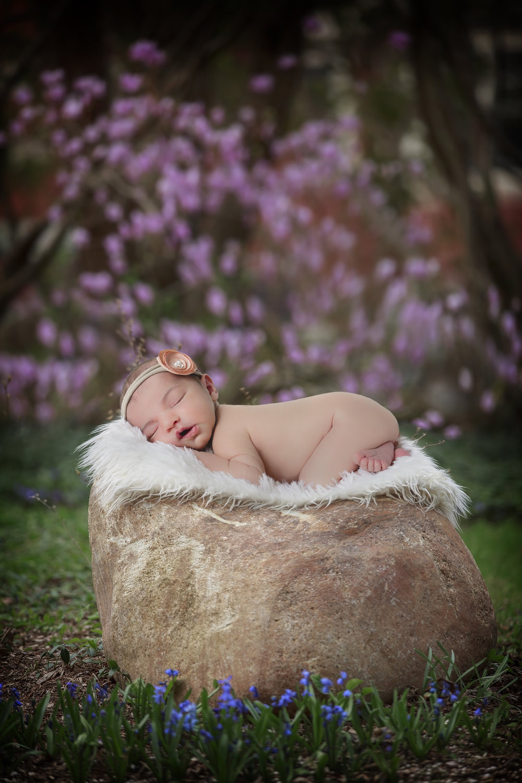 BabyBlakely_Composite4.jpg