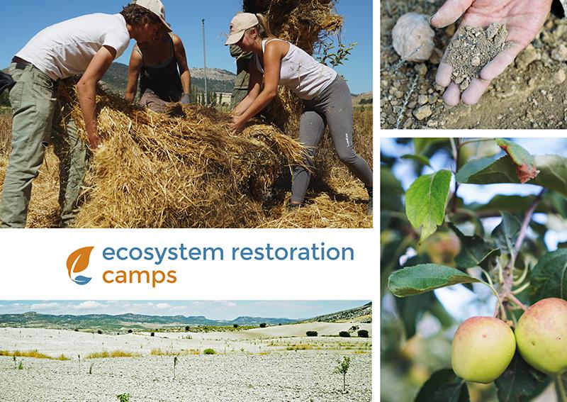 ecosystem_restoration_camps_postcard.png