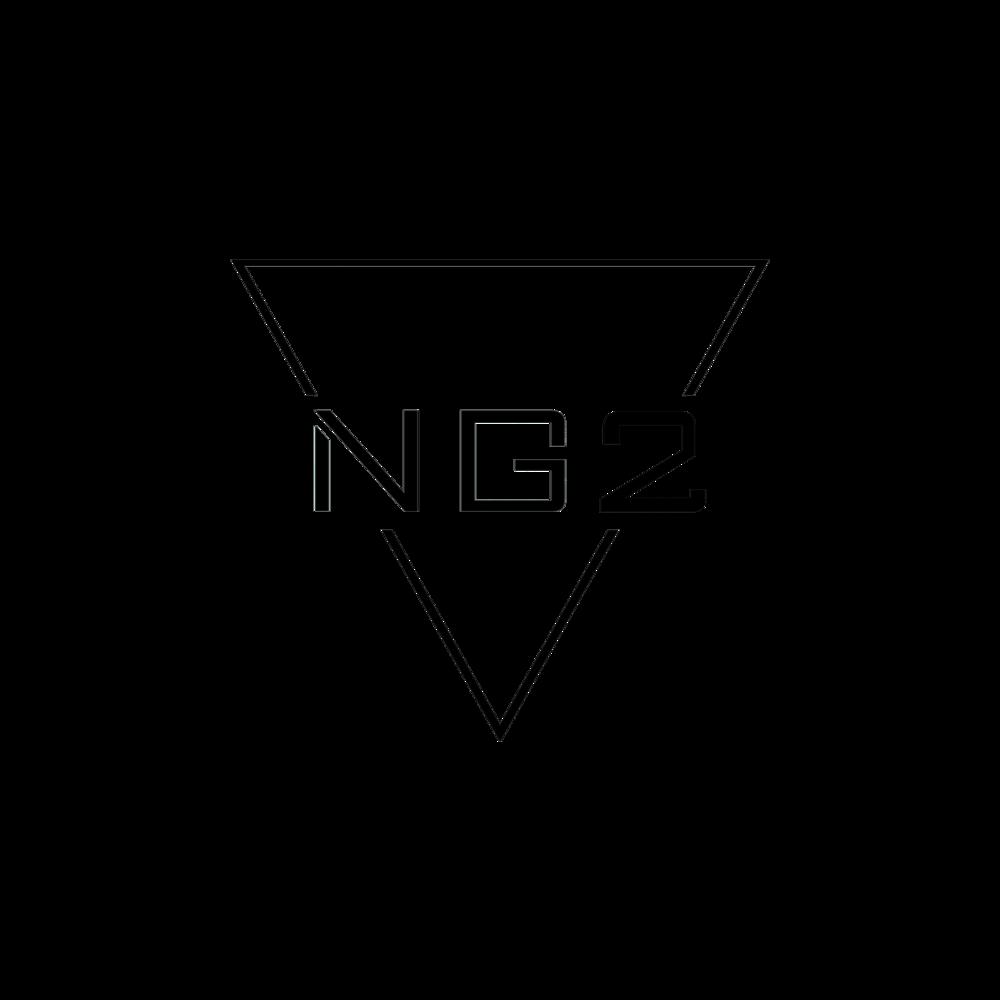 ng2 logo oficial.png