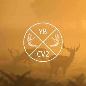 CV2's Young Buck Poetry Prize, 2016 honourable mention: