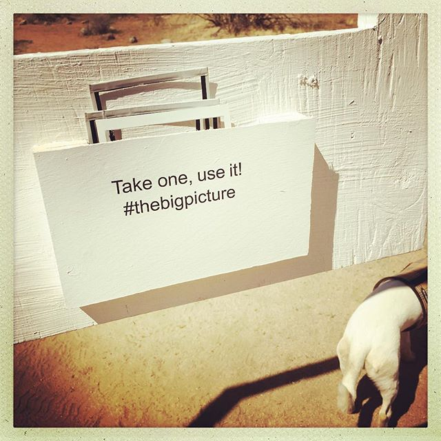 Happy Mothers Day! #roughplayprojects #availabletoall #joshuatree Take one, use it! #thebigpicture @instantdreams