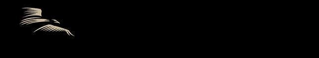 hawkspdx-blackhawk-logo-horizontal-thin-tan-r-u8000.png