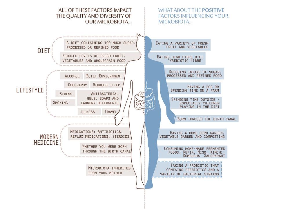Akesi_Gut_Health_Factors.jpg