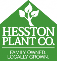 HESSTON PLANT CO.