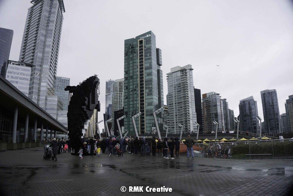 2018.01.20 Women's March Vancouver watermark-37.jpg