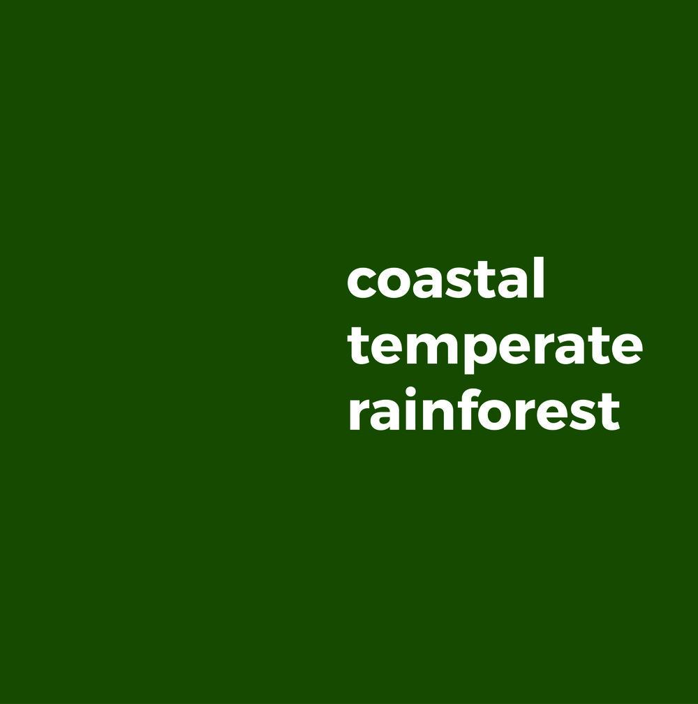 Coastal temperate rainforest.jpg
