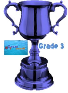 blocean-awards-grade-3-blue.png
