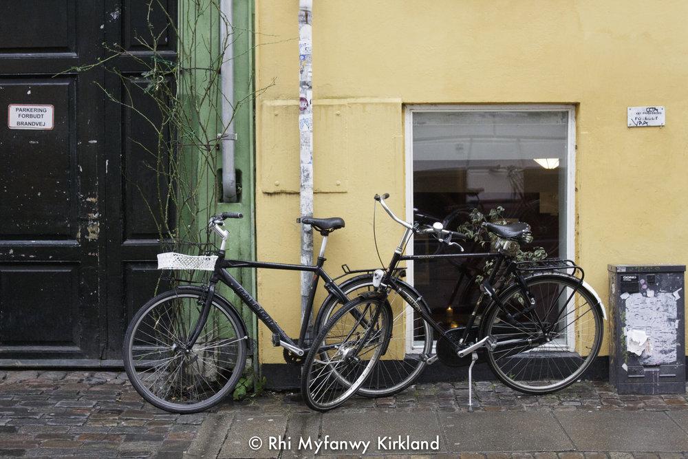 2015-12-19 Copenhagen watermark-10.jpg