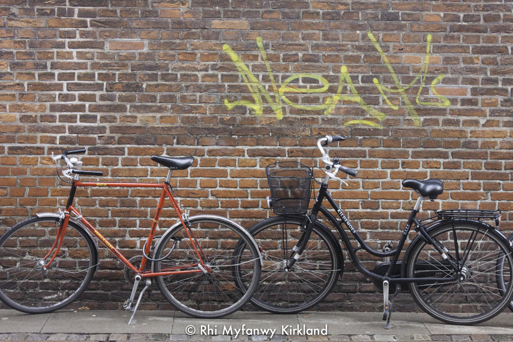 2015-12-19 Copenhagen watermark-20.jpg