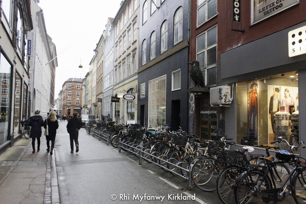 2015-12-19 Copenhagen watermark-23.jpg