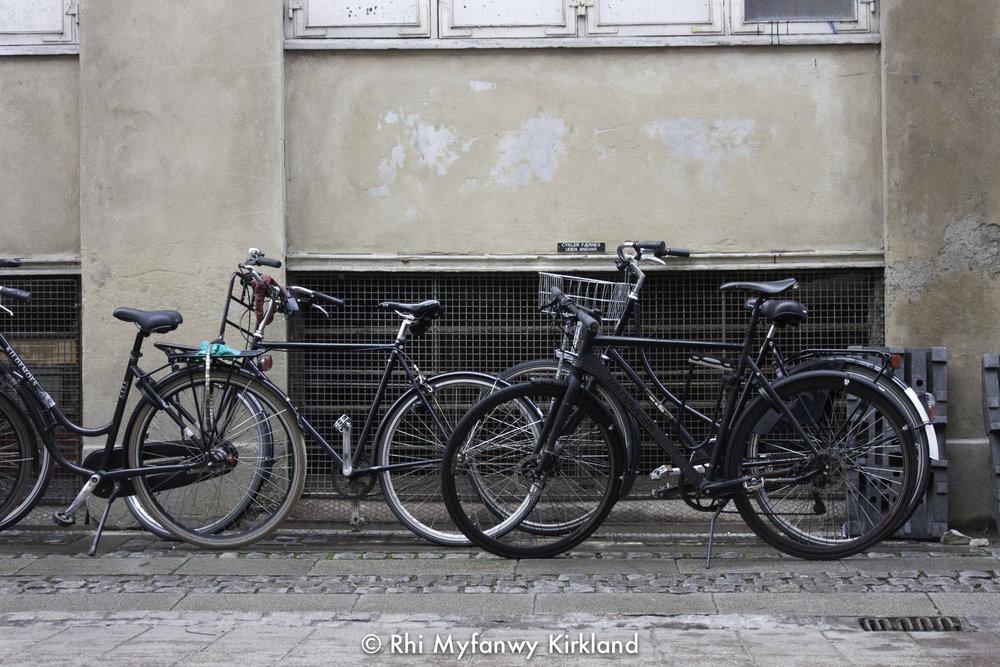 2015-12-19 Copenhagen watermark-26.jpg