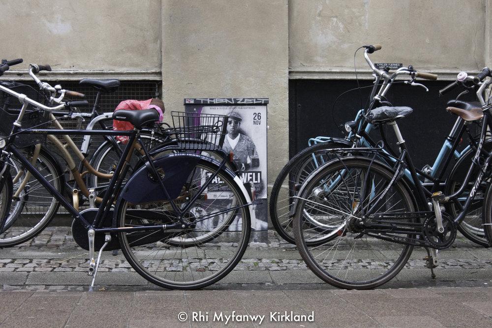 2015-12-19 Copenhagen watermark-27.jpg