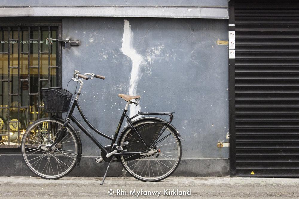 2015-12-19 Copenhagen watermark-32.jpg