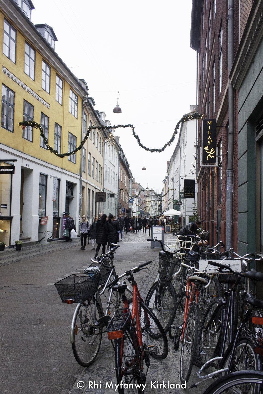 2015-12-19 Copenhagen watermark-34.jpg