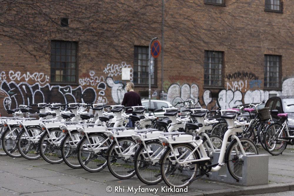 2015-12-19 Copenhagen watermark-51.jpg