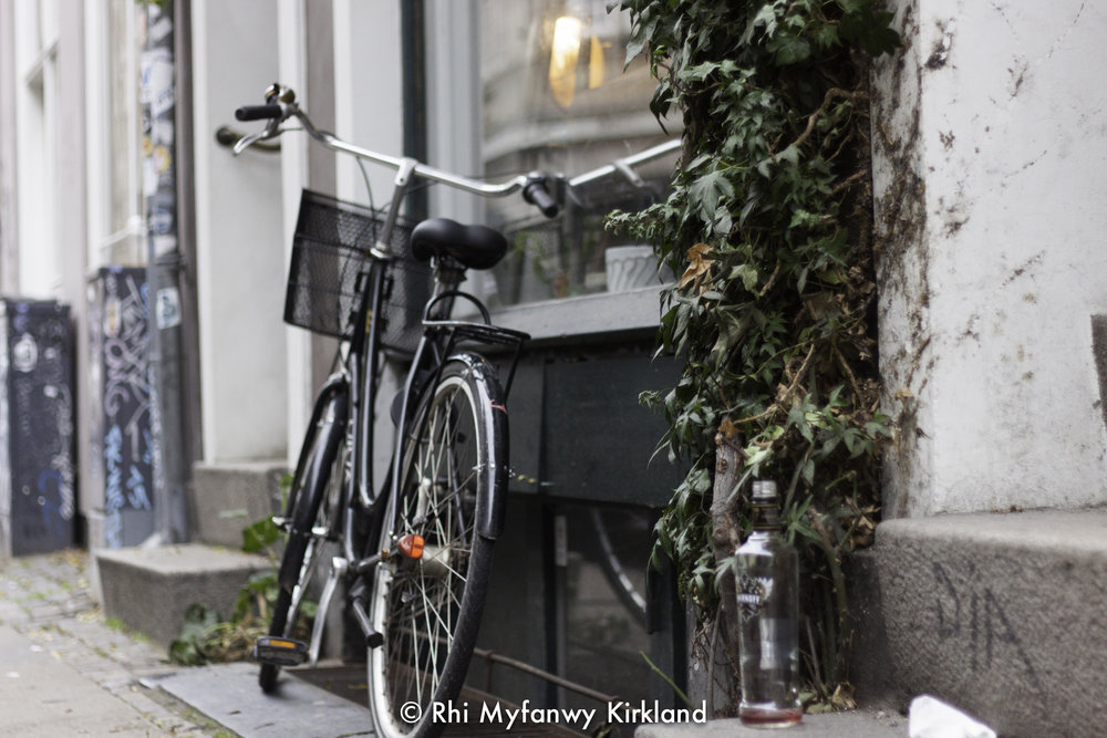 2015-12-19 Copenhagen watermark-58.jpg