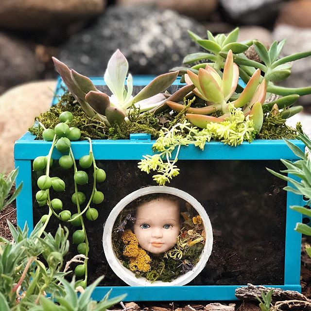 An oldie but still one of my favorites. An encased doll head adorned with curiosities and set in a repurposed lantern. 👶🏼 🌱 Topped with a collection of verdant succulents. It's snowy and cold here in Denver but we are ready to get back to tearing down plaster walls and painting the new space! #terrorium #terrarium #skullart #denverdiy #denverart #denvercolorado #macabre #denverartist #animalskull #nature #natureart #oddities #odditiesandcuriosities #odditiesandantiques #naturephotography #vultureculture #greenthumb #greenmagic #witchesofinstagram #denversmallbusiness #etsy #etsyshop #etsyfinds #succulents #plants #plantsofinstagram #bones #succulentsofinstagram #succulents