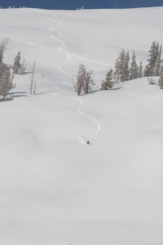 cloudveil mountain heli backyard bowl