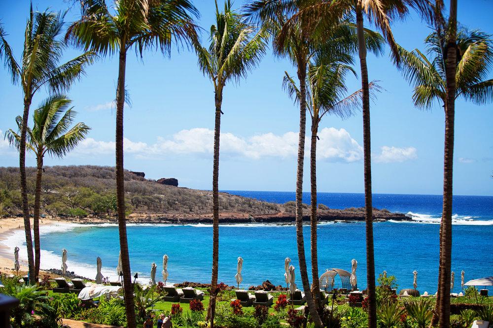 lanai-hawaii-destination-wedding-61.jpg