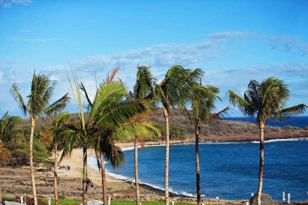 lanai-hawaii-destination-wedding-83.jpg