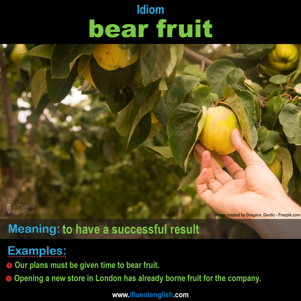 Idiom: bear fruit