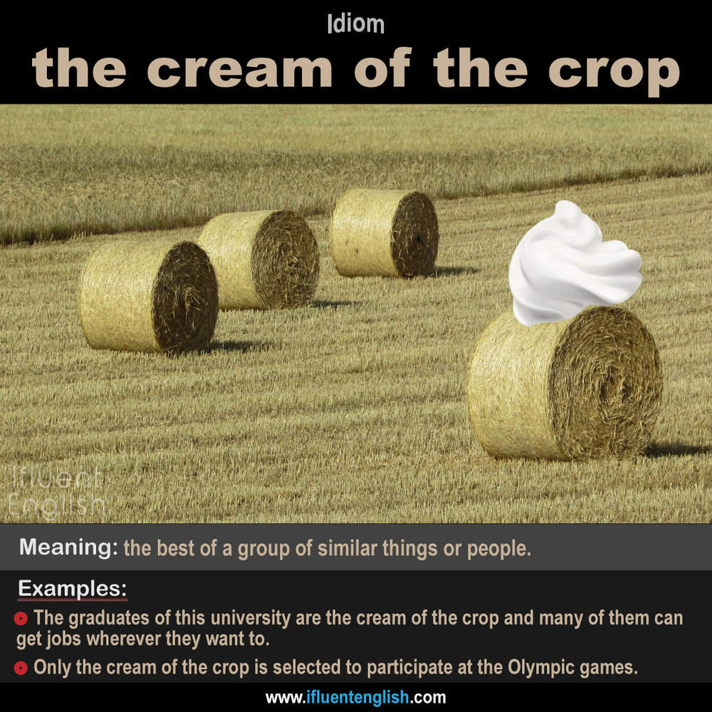 idiom- the cream of the crop