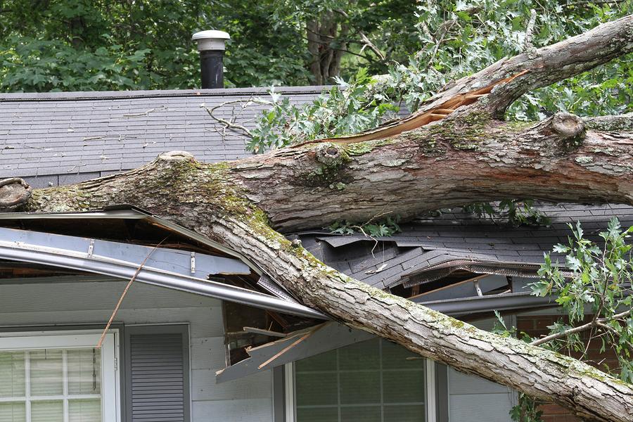 Ipswich, ma wind storm damage insurance claim.
