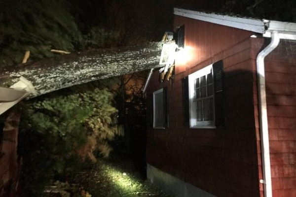 Mattapoisett MA wind damage claims