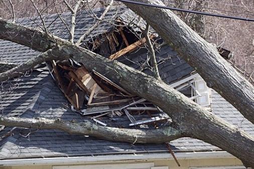 Lakeville MA wind damage claims