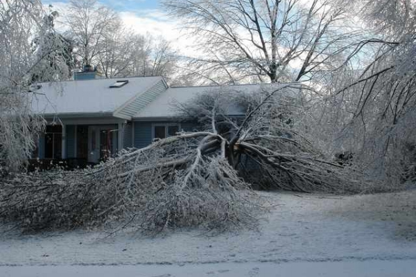 Grafton MA ice storm damage claims