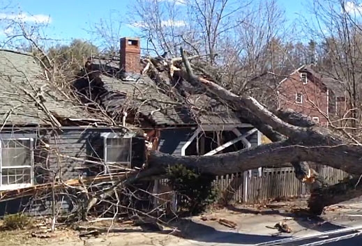 Hamilton MA wind damage claim