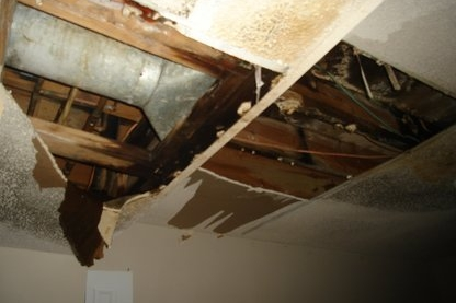Wakefield MA ice dam and water damage claim