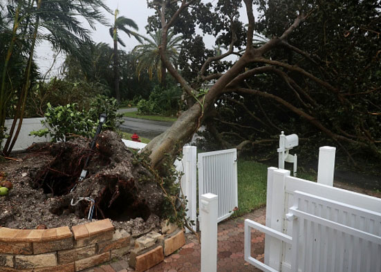 Deerfield FL hurricane wind home damage insurance claims