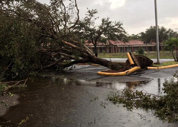 Dania Beach FL hurricane wind home damage insurance claims