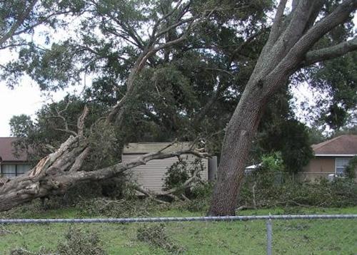 Boca Raton FL hurricane wind home damage insurance claims