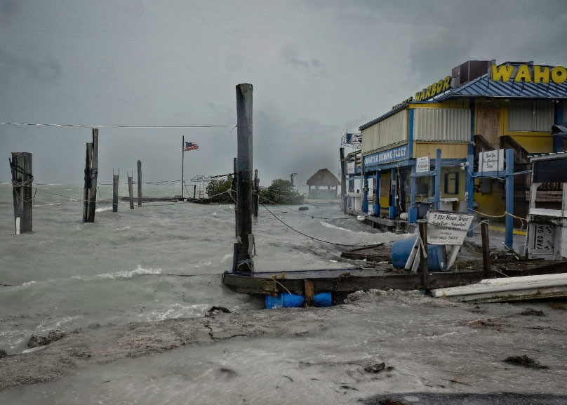 Palm Beach FL business hurricane damage insurance claims