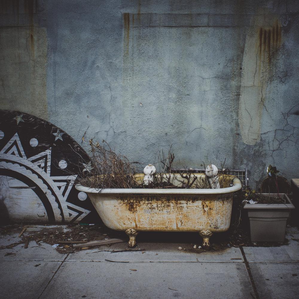 Still Life   www.willoharephotography.com