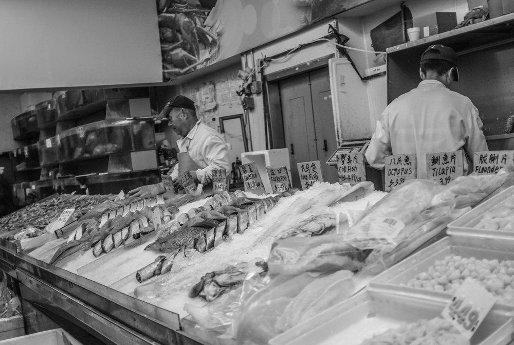 17. Fish Counter