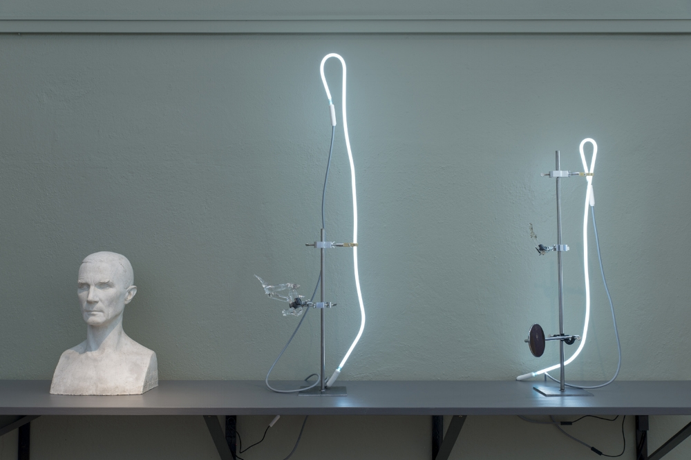 A laboratory assemblage of ethnographic components; Species,  Tools and Fluid left to cool in the absence of an organized body. (Installation of 7 sculptures, fused glass, laboratory burette clamps, thermometer clamps, steel plates, steel rods, neon lights, transformers, magnifying glass), The Sculpture Biennale, Vigelands Museum, 2017