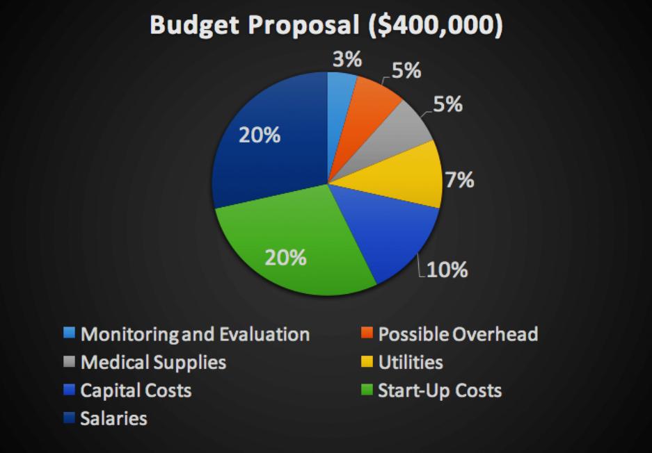Figure 3 - Budget Summary